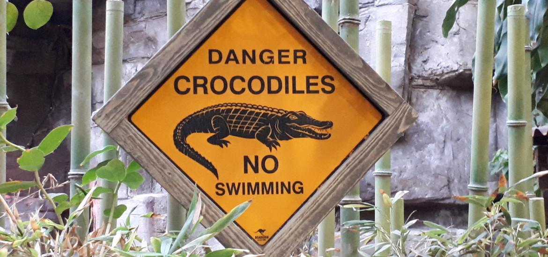 Hagenbeck Krokodilbecken