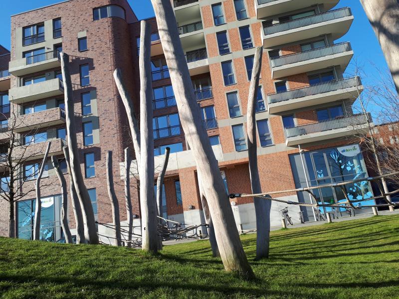 Spielplatz Lohsepark Hafencity Kletterseile