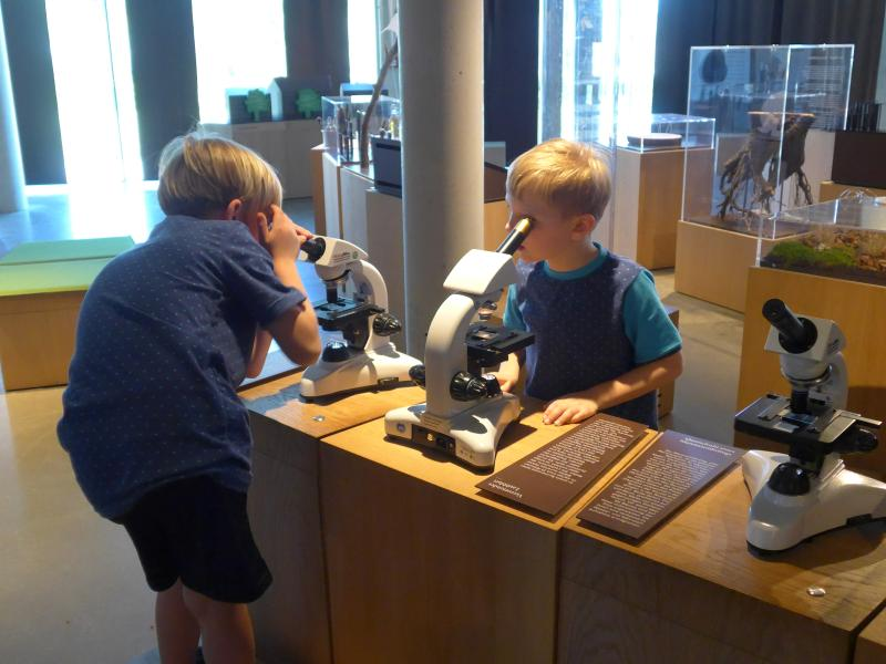 Wälderhaus Hamburg Mikroskopiestation