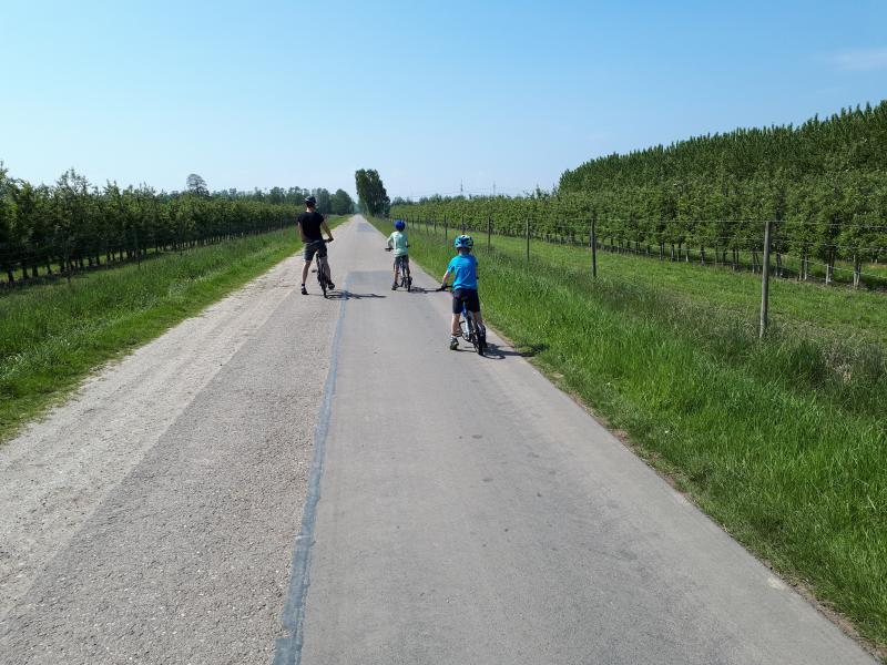 Radtour Elbmarsch