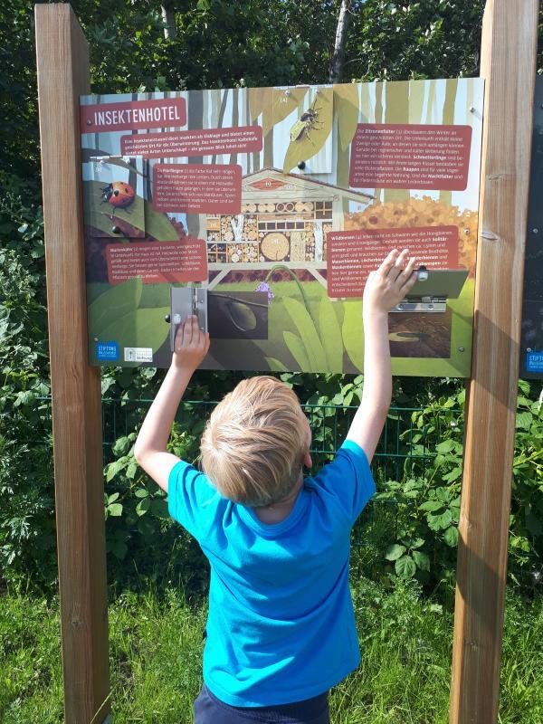 Wasserkunst Elbinsel Informationstafel Insektenhotel