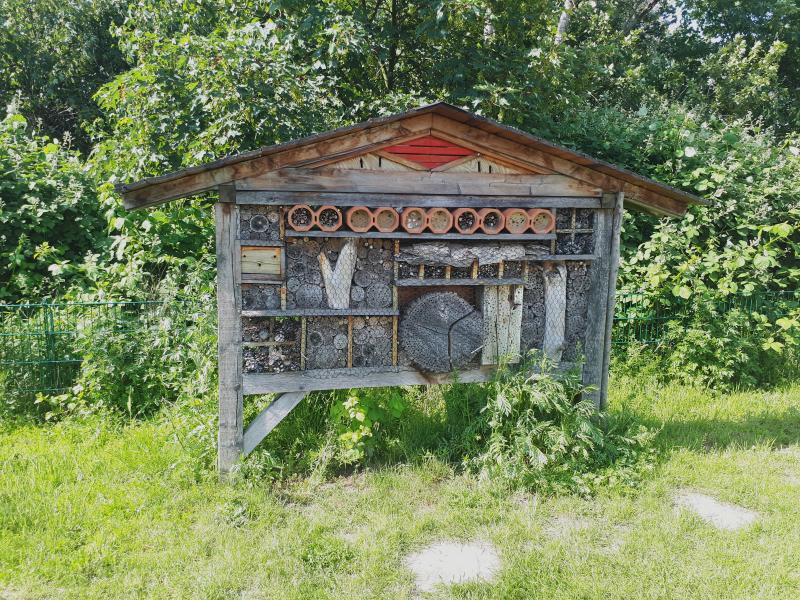 Kaltehofe Insektenhotel