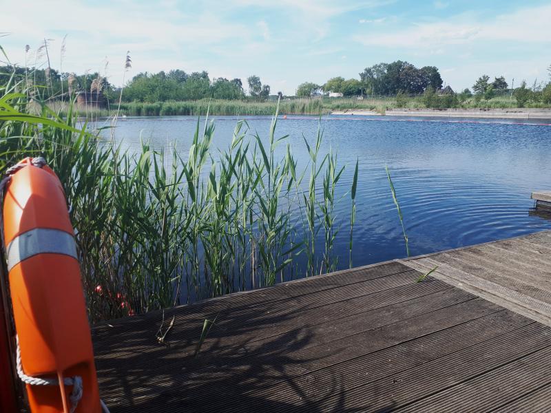 Wasserkunst Elbinsel Schwimmbecken