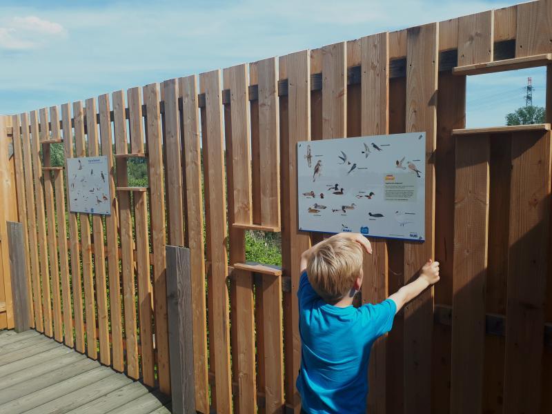 Wasserkunst Vogelbeobachtungsstation